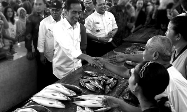 Jokowi-Ma'ruf in Action (2)