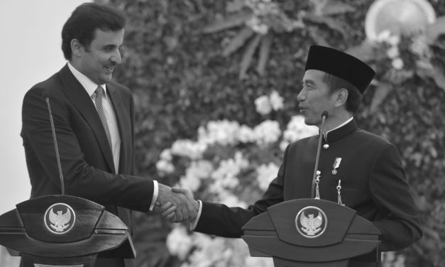 Qatar Investments in Indonesia
